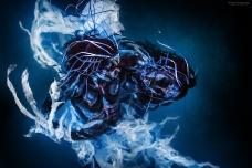 What Lurks Beneath by Ben Von Wong [Photography] - 002