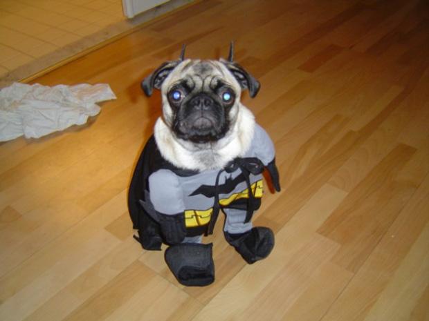 Black Ops Halloween Costume