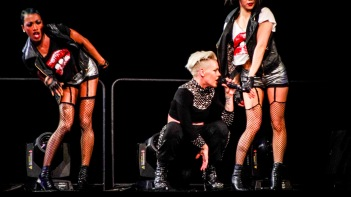 Pink at Perth Arena 2013-15