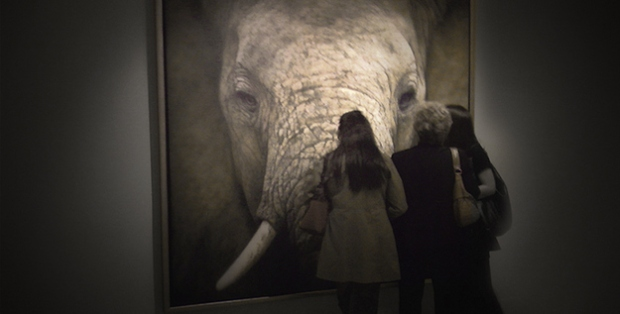 Stunning Works Of Art You Won't Believe Are Not Photos-19