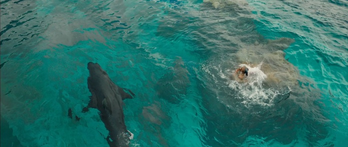 The Shallows Trailer Blake Lively with Great White Shark